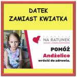 DATEK_ZAMIAS_KWIATKA