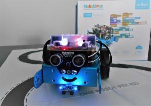 DSCN9376robot