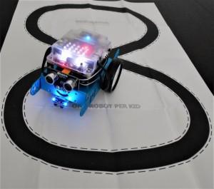 DSCN9377robot2